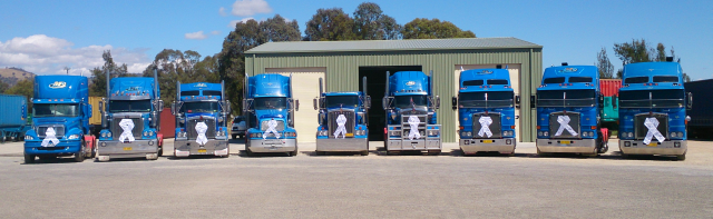McGrorys Transport truck fleet